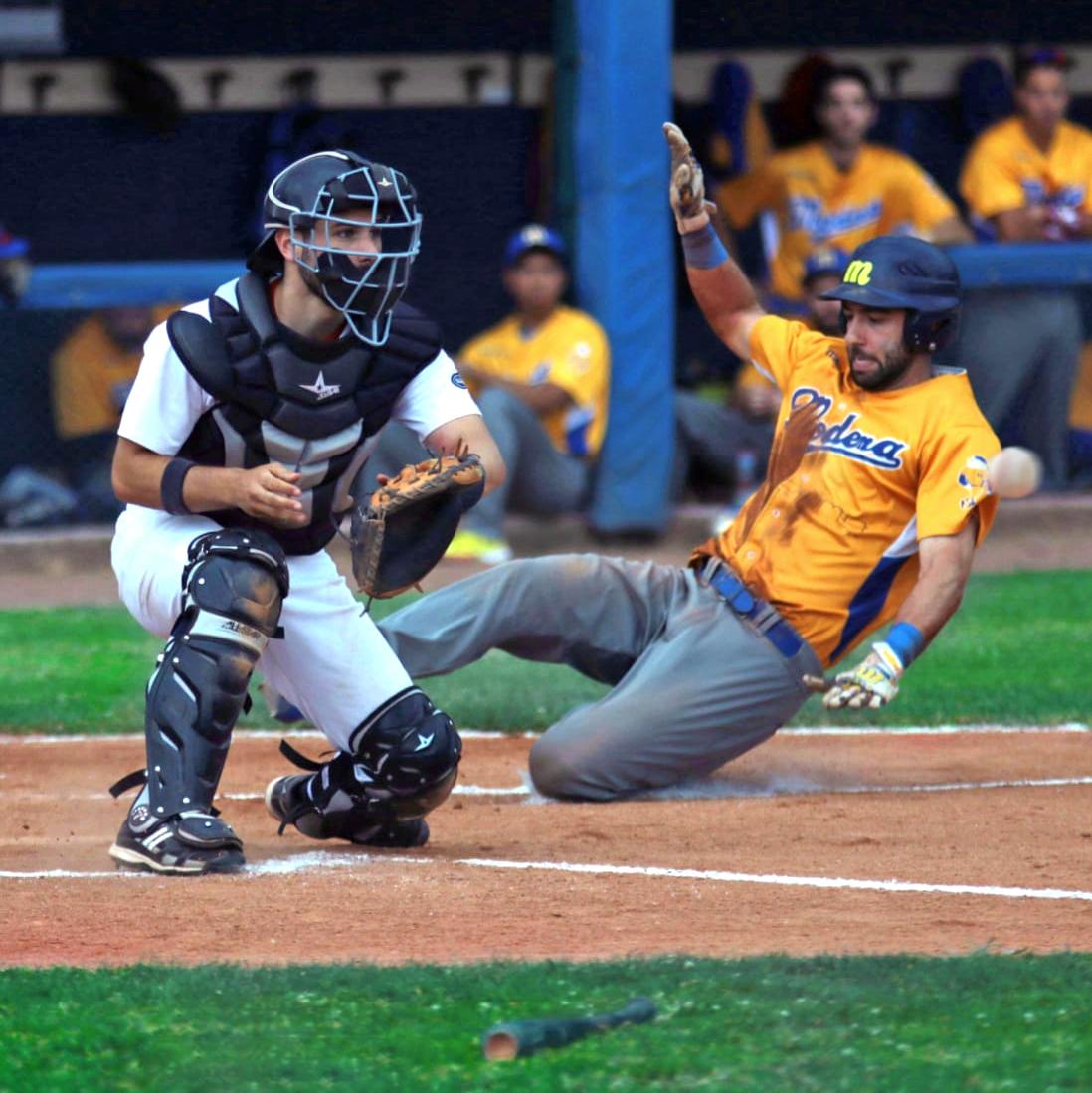 Andrea Orrasch, l'utility del Verona Baseball